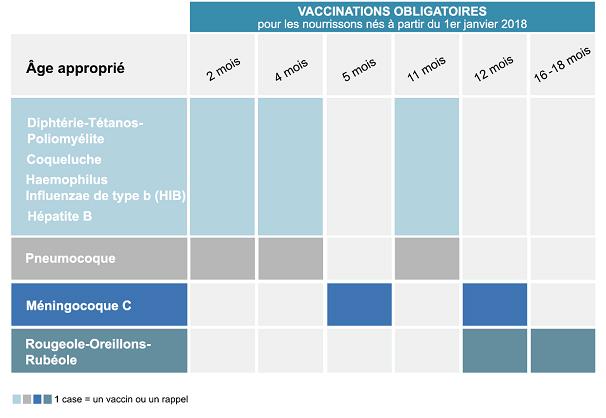 vaccin papillomavirus age