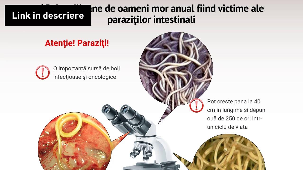 Klinistil paraziți – comentarii negative, opinii, pret, site-ul oficial