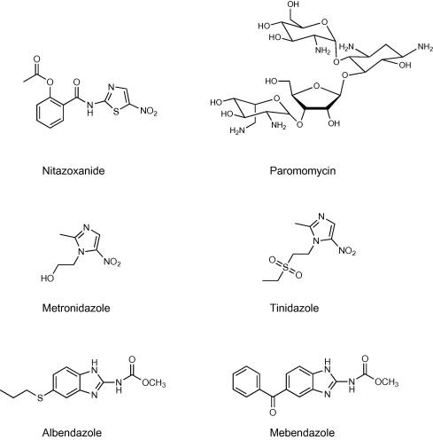criptosporidiu și giardia