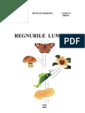 Bandă largă diphyllobothriasis. Norma generală de protecție a muncii din 20.11.2002