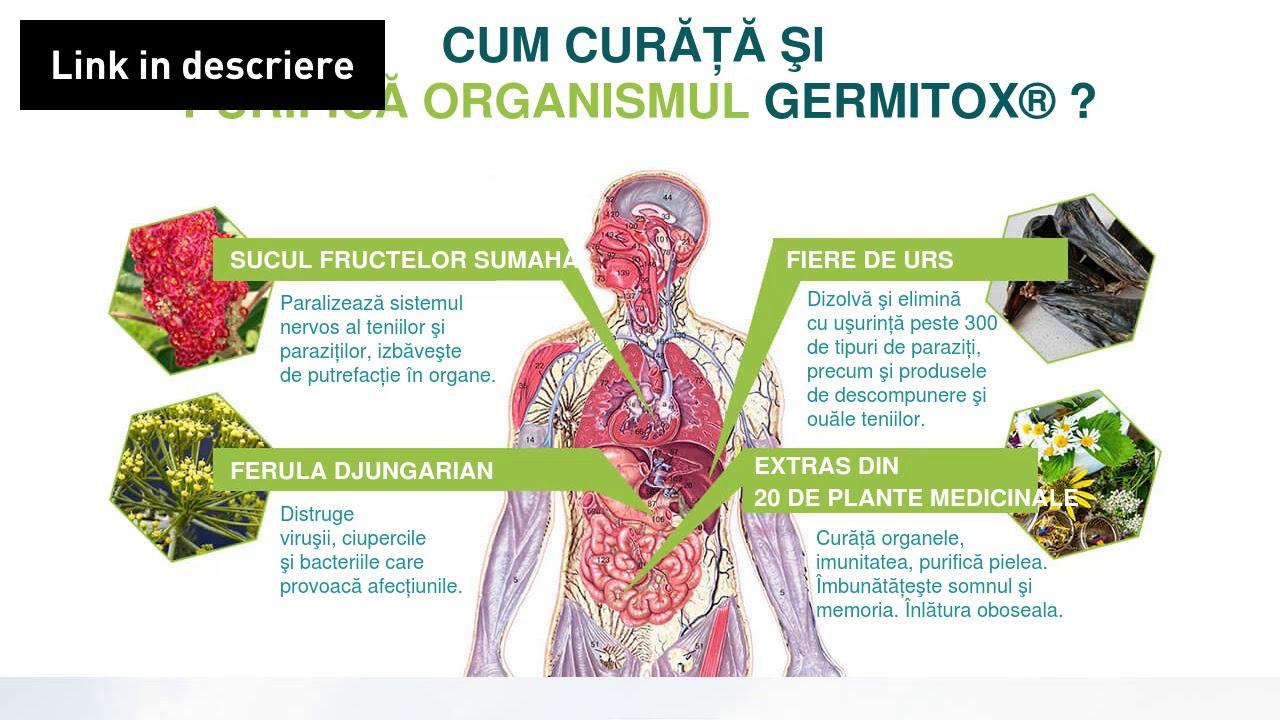 7 remedii naturale contra parazitilor intestinali Cum se vindecă paraziții din organism