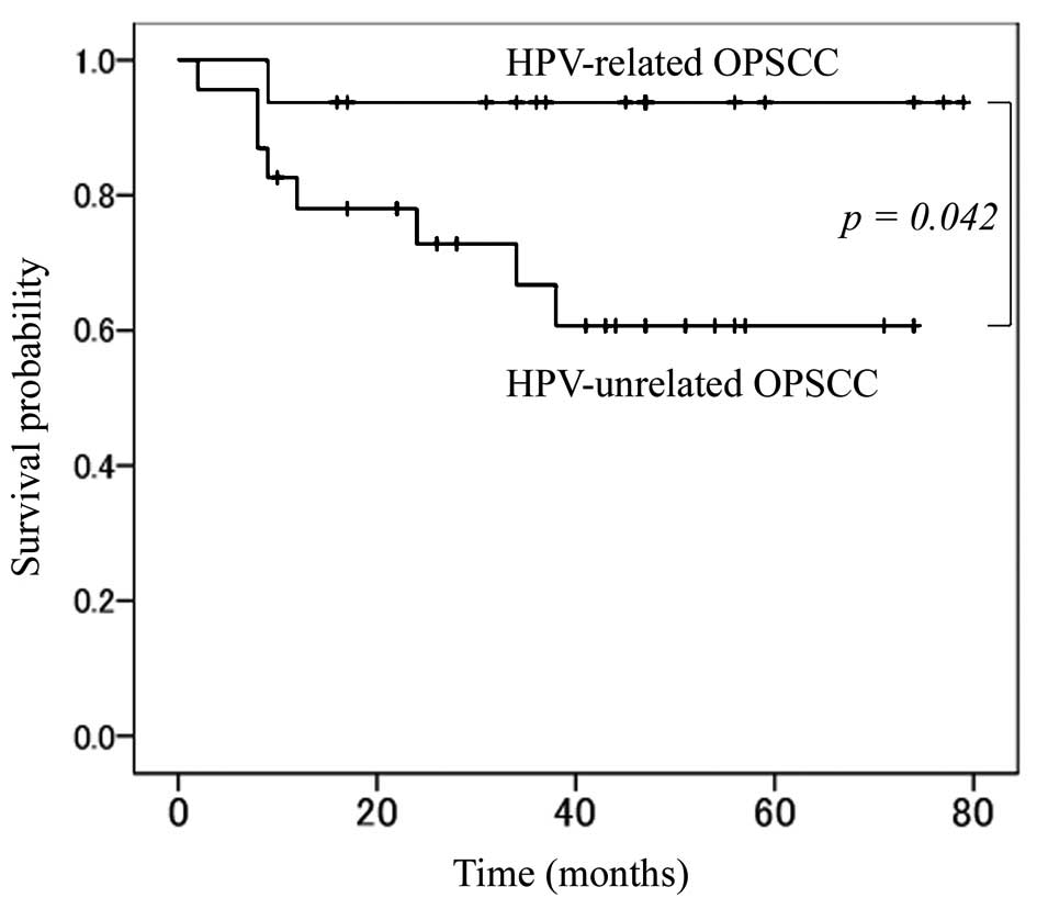 Cervical cancer from hpv survival rate. Lingual tonsil papilloma, Hpv cancer survival rate