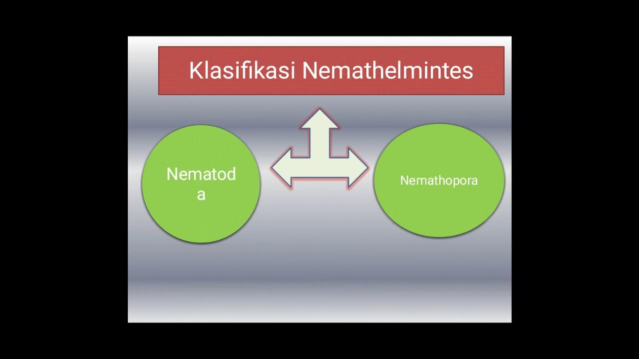 medicamente antihelmintice pentru viermele uman helminthic therapy crohn s disease