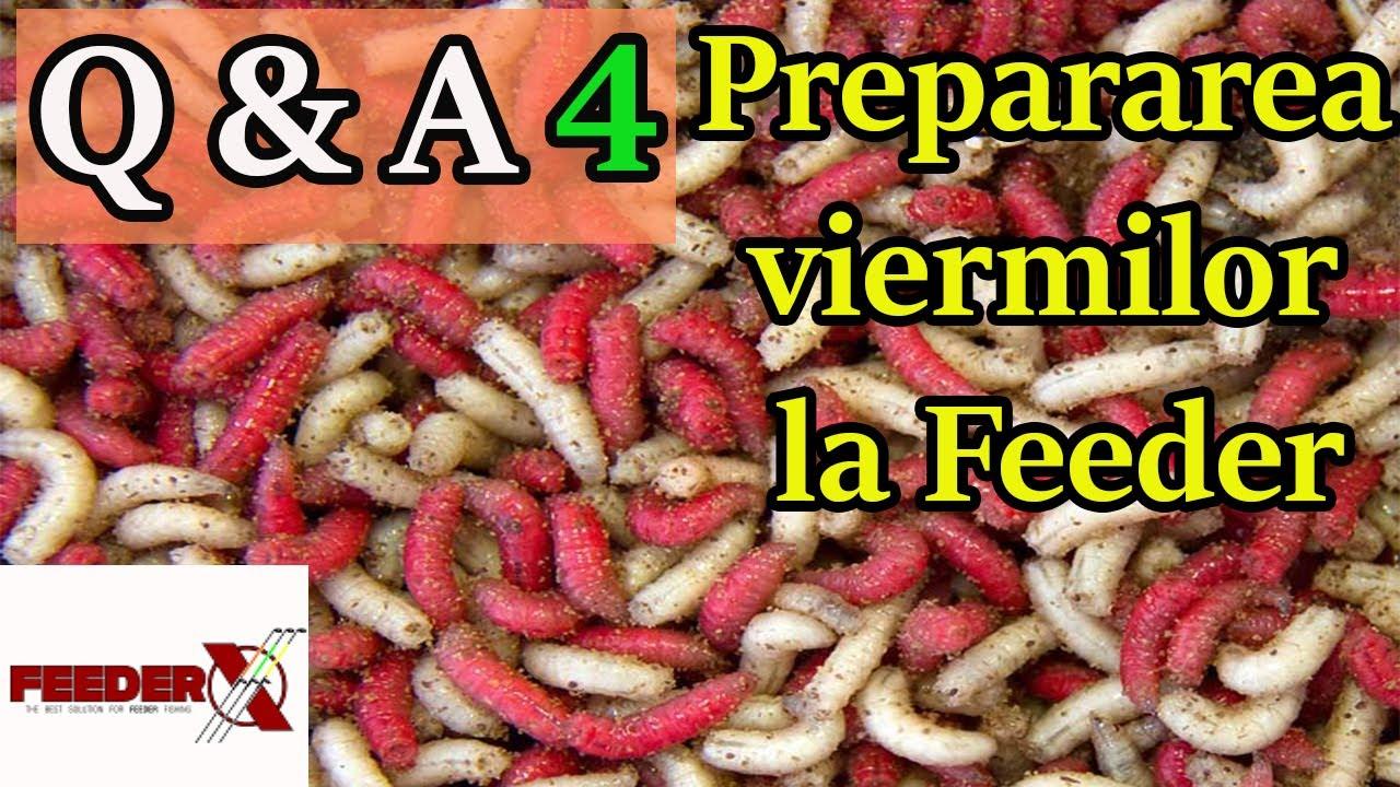 De la viermi la adulți, pastilele sunt bune - Un agent pentru prevenirea paraziților adulți