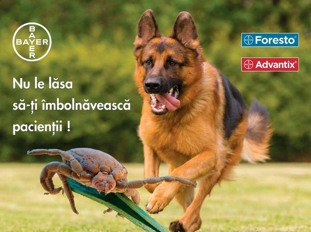 Institutul de Zoologie :: Parazitologie si Helmintologie