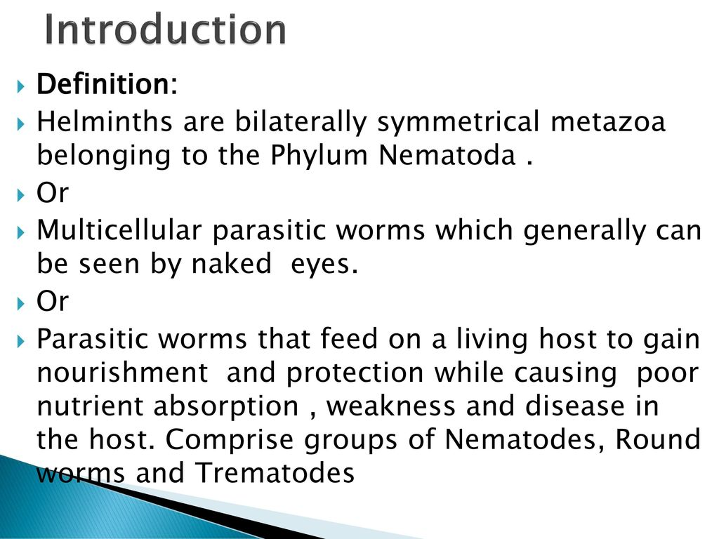 helminth platyhelminth definition