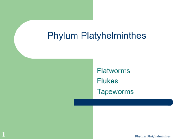 Reproducere platyhelminthes, Posts navigation