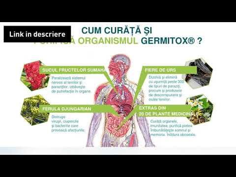 asd vindecă paraziții condyloma acuminatum excision cpt code
