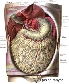 cancer peritoneal que es