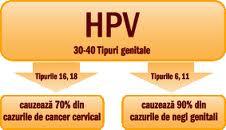 Negi genitali (Human Papilloma Virus – HPV) condiloame, veruci veneriene, creastă de cocoş