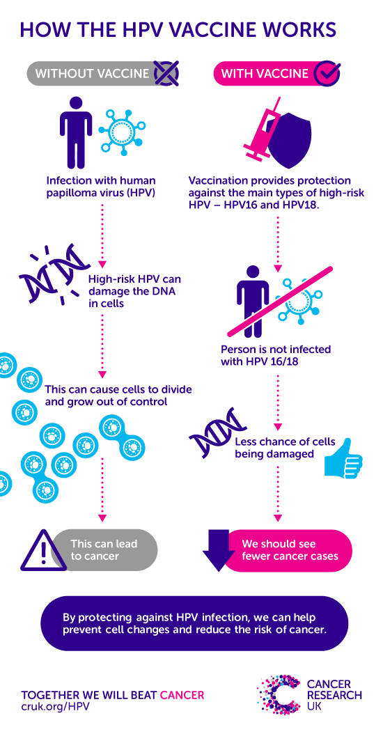 Hpv virus or infection, Hpv human papillomavirus symptoms Infectia cu HPV (Human Papilloma Virus)