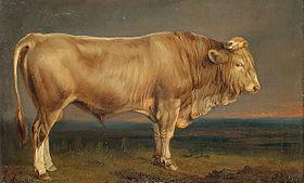 Taur (zodie) - Wikipedia