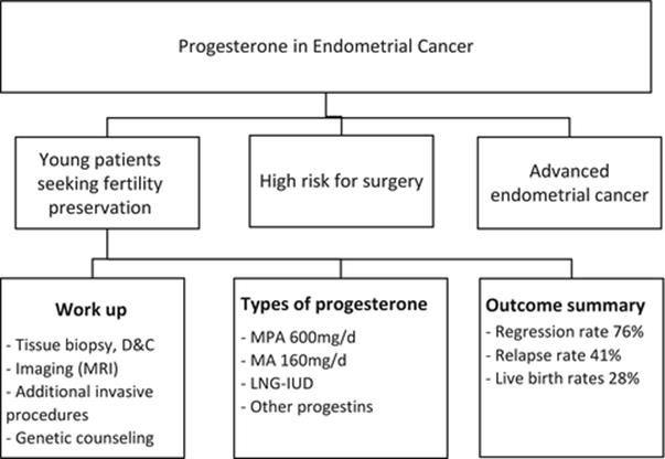 endometrial cancer in young patients