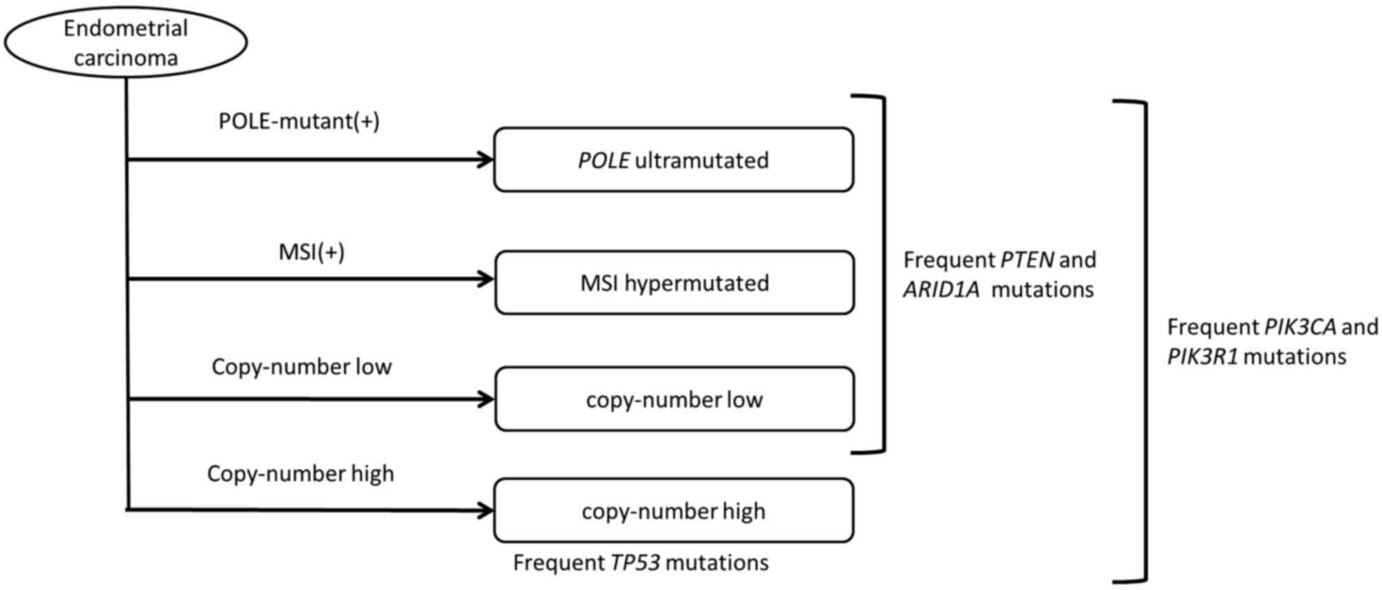 Evoluția hiperplaziei endometriale la cancer Endometrial cancer microsatellite instability