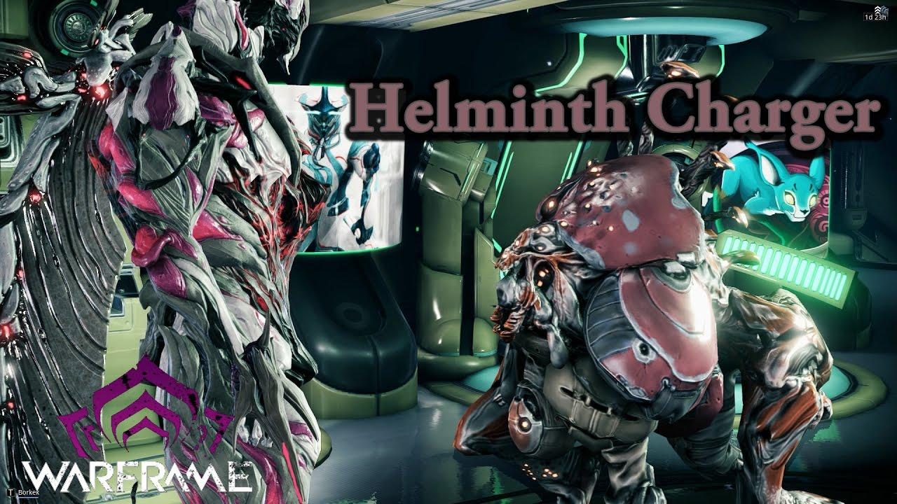 helminth infection warframe