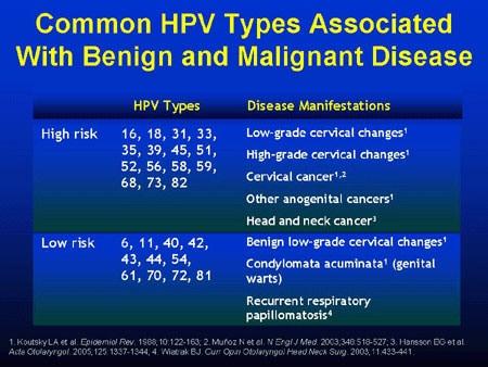 high risk hpv mean cancer