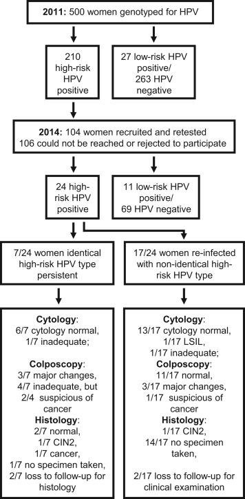 alternanță de tip tapeworm hpv throat cancer death rate