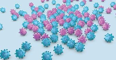 papilloma virus rischio alto oxiuri se vad cu ochiul liber