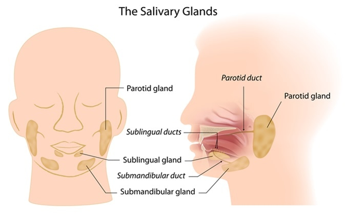 Enterobiasis mucus, Cervical cancer virus