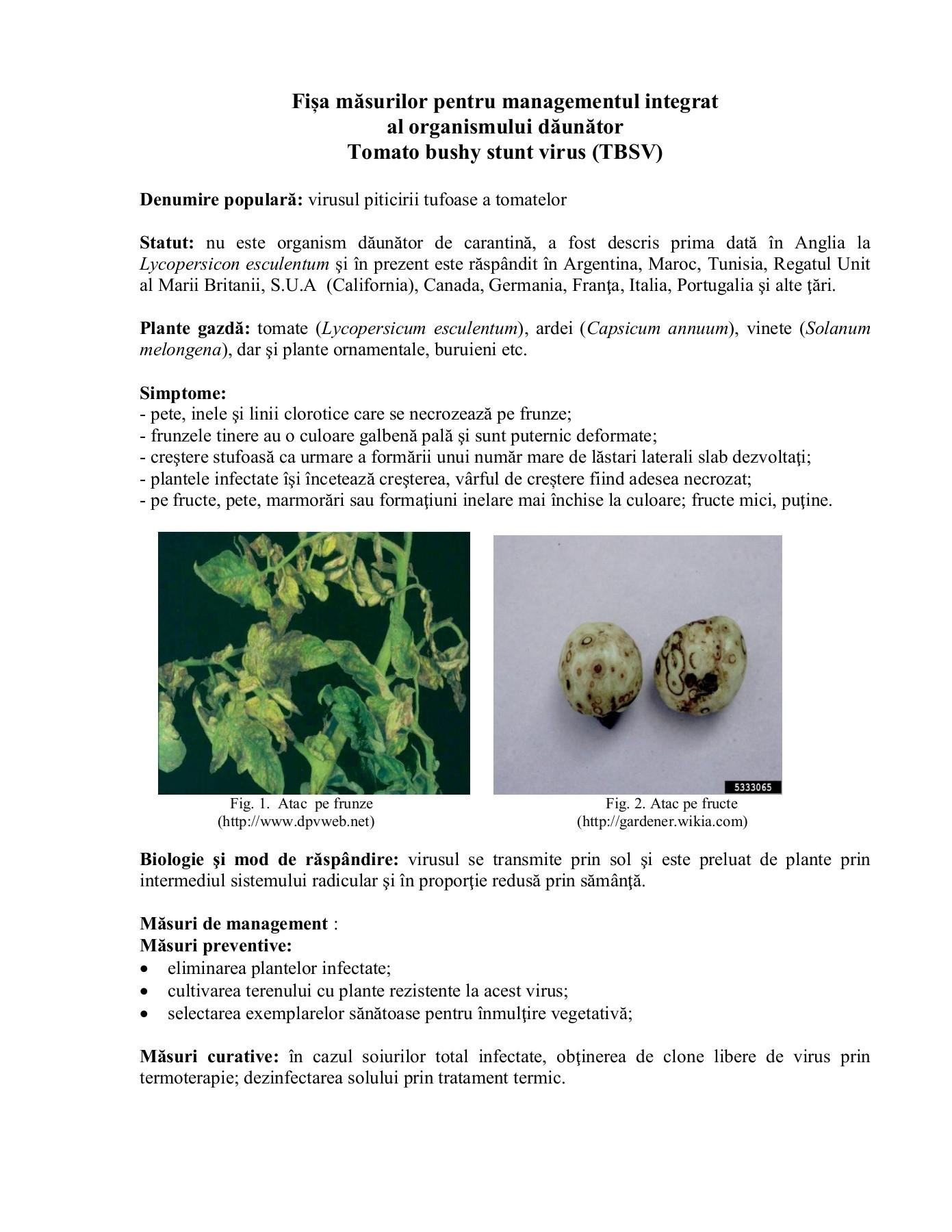 paraziți entomofagi