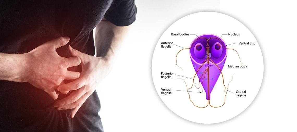 pierdere în greutate giardiasis