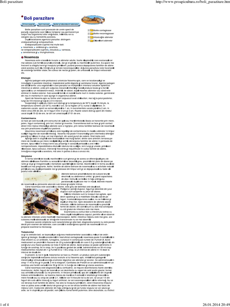 Preparare parazitară. Trichineloză - Wikipedia