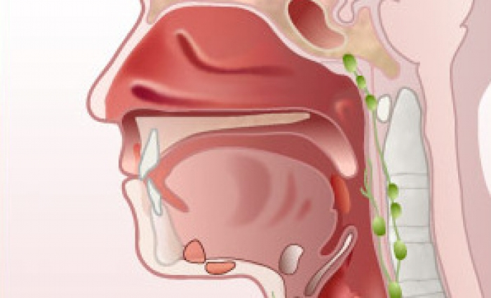 dermatolog papilom tratament paraziți copii