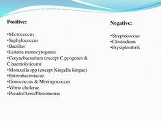 tratamentul cu paraziti scortisoara hpv vaccine treat cancer