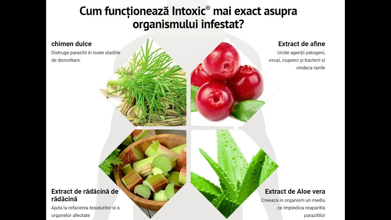 planuri de detoxifiere a colonului natural