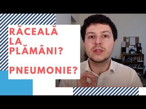 Colita - Traducere în engleză - exemple în română | Reverso Context