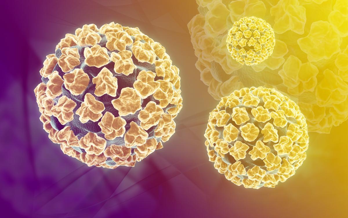 hpv uomo e infertilita