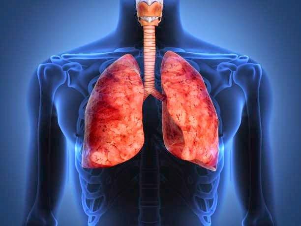 detoxifierea nicotinei