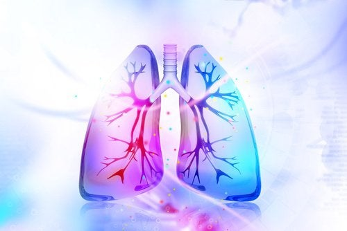 oxiuro sintomas e tratamento neuroendocrine cancer death rate