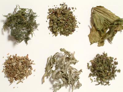 Ceaiul negru: proprietati, beneficii si efecte adverse