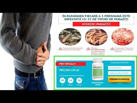 simptomele paraziților interni dermatite zampa cane