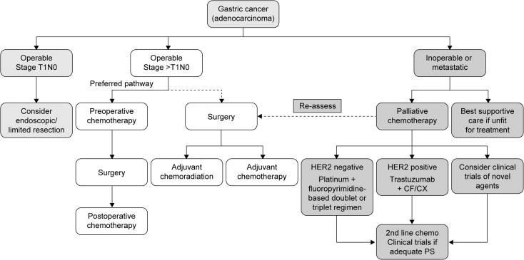 Revista Societatii de Medicina Interna - Gastric cancer esmo Gastric cancer esmo